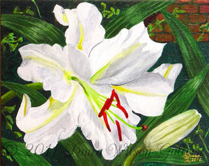 Casa Blanca Lily Original Acrylic Painting on Canvas Board - Laura Wilson Gallery