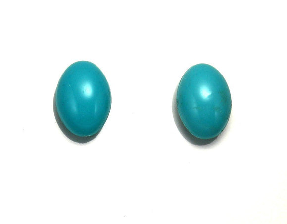 White,  Black or Turquoise 12 x 18 Oval Acrylic Magnetic Earrings