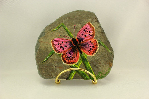 Original Acrylic Painting of a Purplish Copper Butterfly on New York Slate - Laura Wilson Gallery