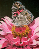 American Painted Lady and Zinnia Original Acrylic Painting on Canvas - Laura Wilson Gallery