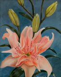 Pink Elodie Lily Original Acrylic Painting on Canvas - Laura Wilson Gallery