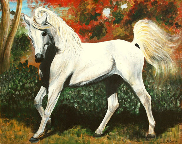 Little Arabian Horse 24 x 30 Inch Original Acrylic Painting on Canvas - Laura Wilson Gallery