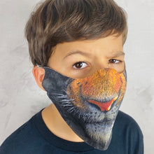 Load image into Gallery viewer, Tiger Lightweight Animal Mask - Shop Glam Fairy