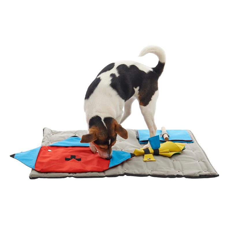 Buster Canvas Activity Snuffle Mat Starter Kit Interactive Dog | Positive Dog Products | Adelaide