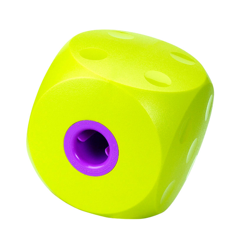 Buster Cube Large
