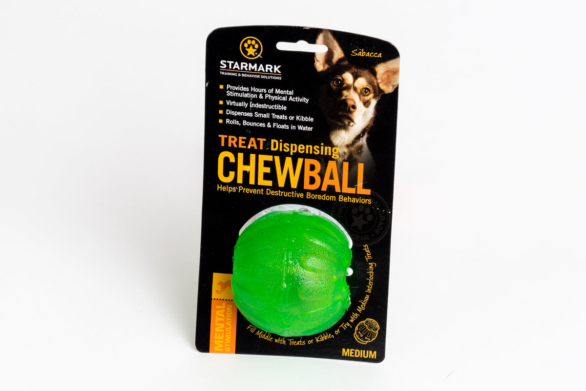 Everlasting Chew Ball Regular - Positive Dog Products