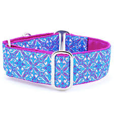 Designer Collar - Opulent - Positive Dog Products