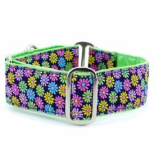 Designer Collar Margaritas Kiwi - Positive Dog Products