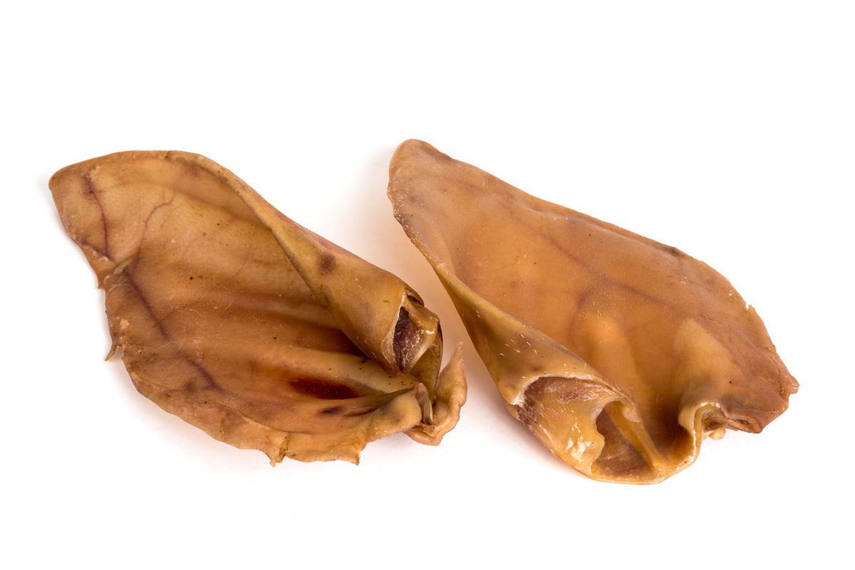 Pigs Ear - Bag of Two | Positive Dog Products | Adelaide