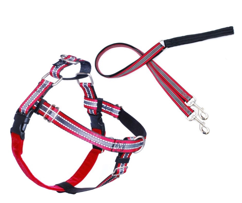 Reflective Pack Freedom No Pull Harness Harness & Training Lead Red - Positive Dog Products