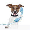 Phone Advice | Positive Dog Products | Adelaide