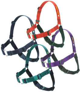 Sensational Harness Large 3/4 - Positive Dog Products