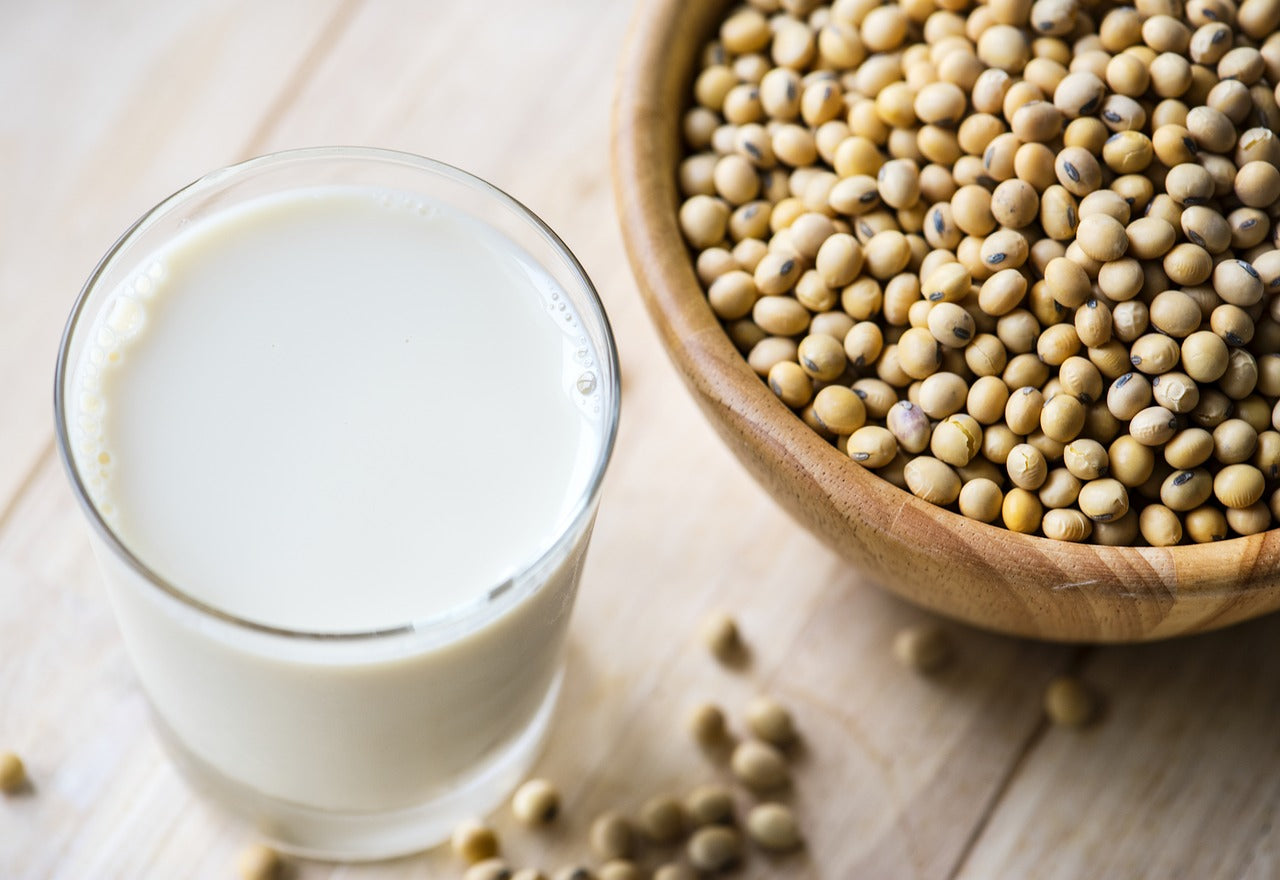 soy protein isolate health benefits