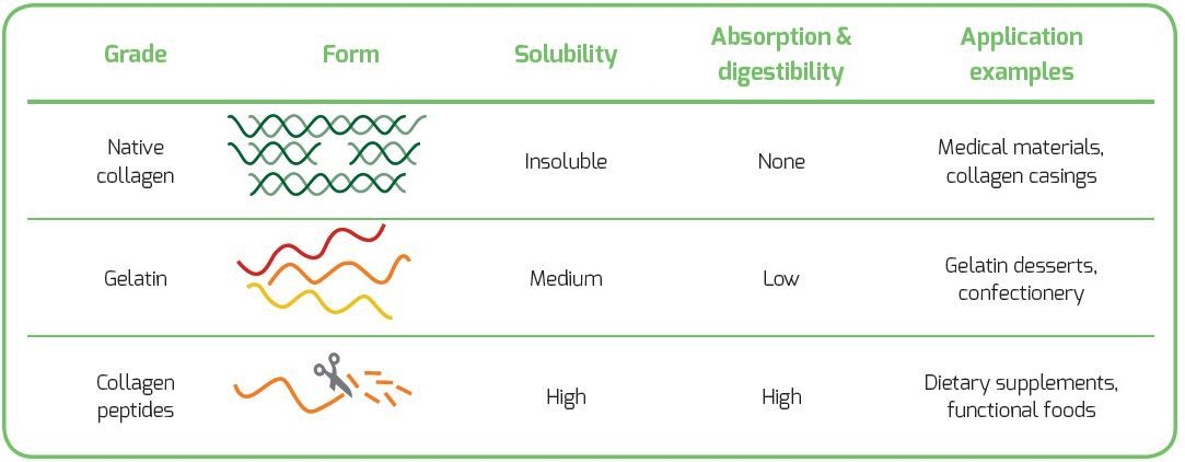 functional differences of gelatin , collagen and collagen peptides