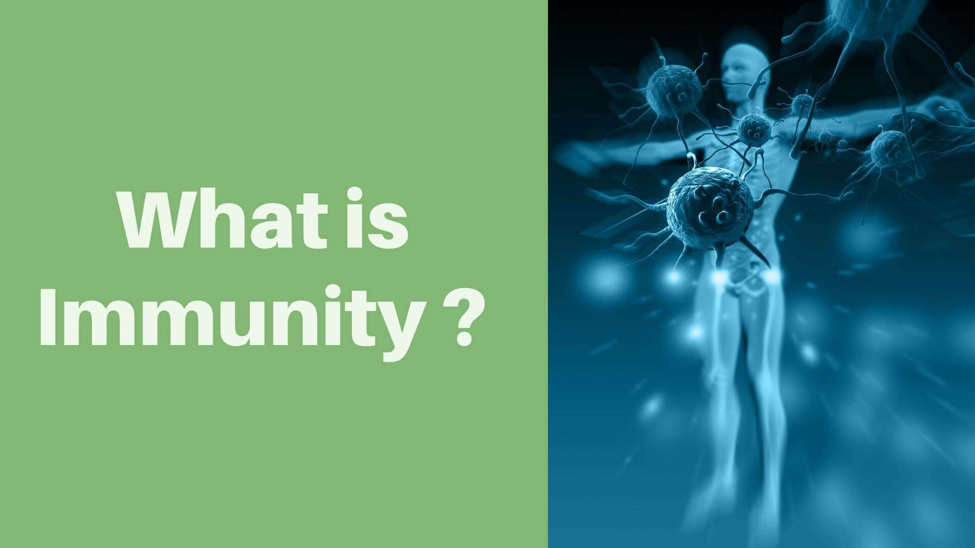 What is Immunity ?