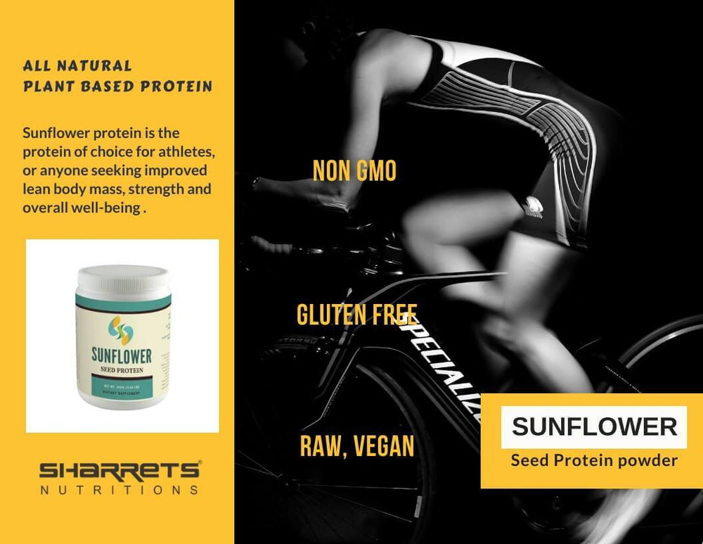 Sunflower seed Plant based Veg protein - Sharrets Nutritions LLP , India