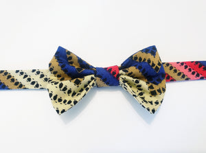 ALEXANDER MULTI-COLORED SINGLE BOW TIE