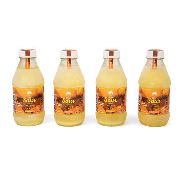 4-PACK GINGER (4 Botellas de Pisco Sour + Jengibre)
