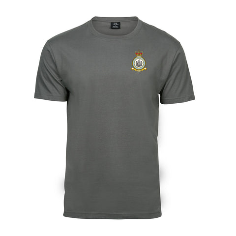 RAF Auxiliary 603 Squadron T-Shirt Powder Grey