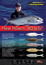 "Laden Sie das Bild in den Galerie-Viewer, Real Roach 3D 4.5"" by Fish Action"
