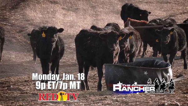 A segment of The American Rancher on RFD TV included a segment featuring Felton Angus Beef.