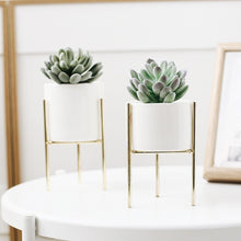 Load image into Gallery viewer, Huntleigh Ceramic Planter and Stand