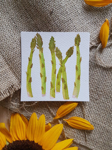Watercolor Asparagus