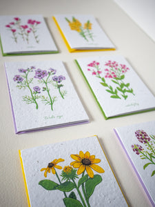 Close up of greeting cards featuring paintings of wildflowers printed on beautifully textured plantable seed paper.