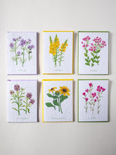 Load image into Gallery viewer, Wildflower Seed Paper Cards