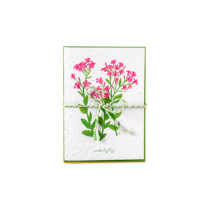 Bundle of greeting cards featuring Canadian and American wildflowers printed on plantable seed paper.