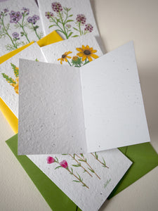 Blank inside of greeting card showing the texture of the seed paper.