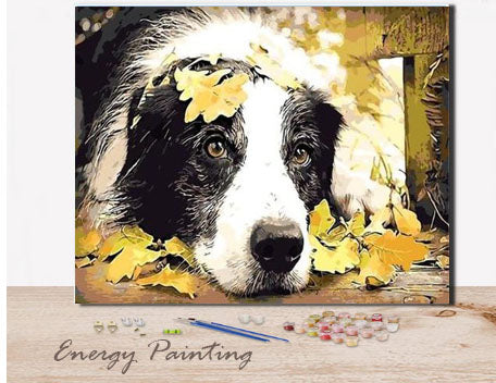 REF190-ENERGY-PAINTING-PEINTURE-PAR-NUMERO-BORDER-COLLIE