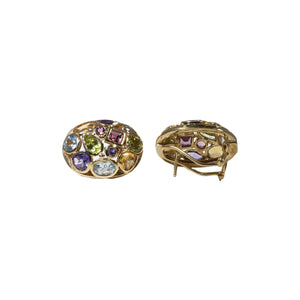 """THE FRANCES"" VINTAGE RETRO MULTICOLORED GEM EARRINGS"