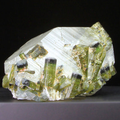 Bi-color tourmaline on quartz from brazil mineral specimen