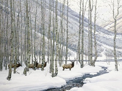 antlers in the aspen by wayne wolfe prix de west winner 1982 signed print matted art winter elk western artist