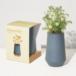 Paris Laundry Home Copy of Copy of Tapered Tumbler Grow Kit- Chamomile