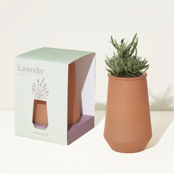 Paris Laundry Home Tapered Tumbler Grow Kit- Lavender