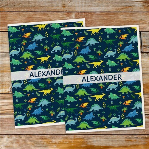 Personalized Dinosaurs Folder Set