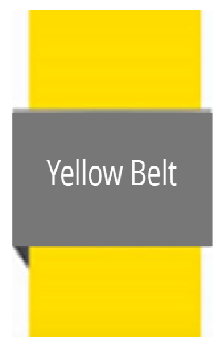 Yellow Belt Self-paced, modular, personalised certification course