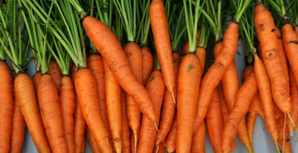 ||||carrots-for-skin-grooming