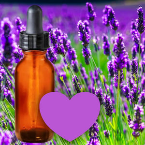 Essential Oil Signature Scent | Lavender | The background is made up of a lavender field in full bloom. A glass amber dropper bottle is in the foreground. A mauve heart at the bottom of the image signifies the signature laevnder scent.