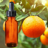 Essential Oil | Orange | The background is made up of oranges with raindrops on them hanging from an orange tree with leaves on it. A glass amber dropper bottle is in the foreground.