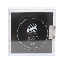 Load image into Gallery viewer, GSR - Official Game Puck w/ Case