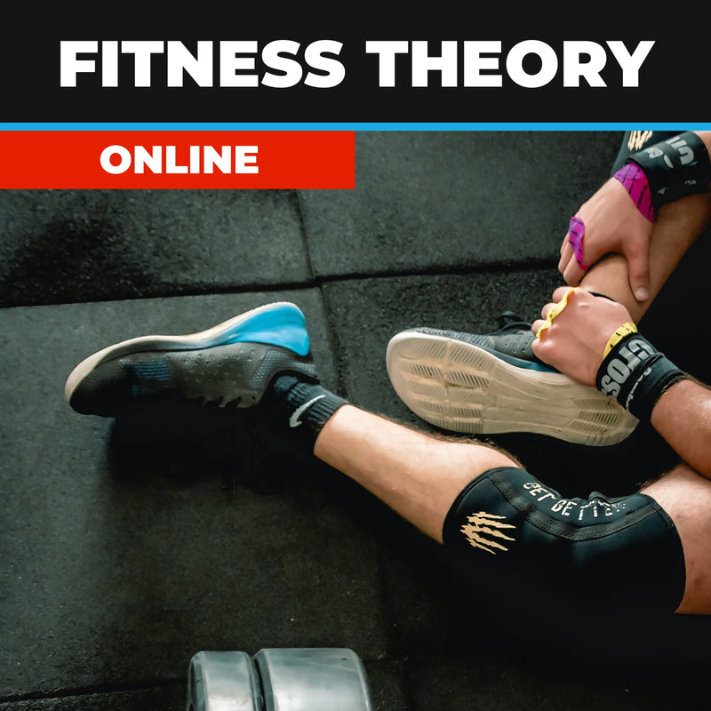Fitness Theory Online Course
