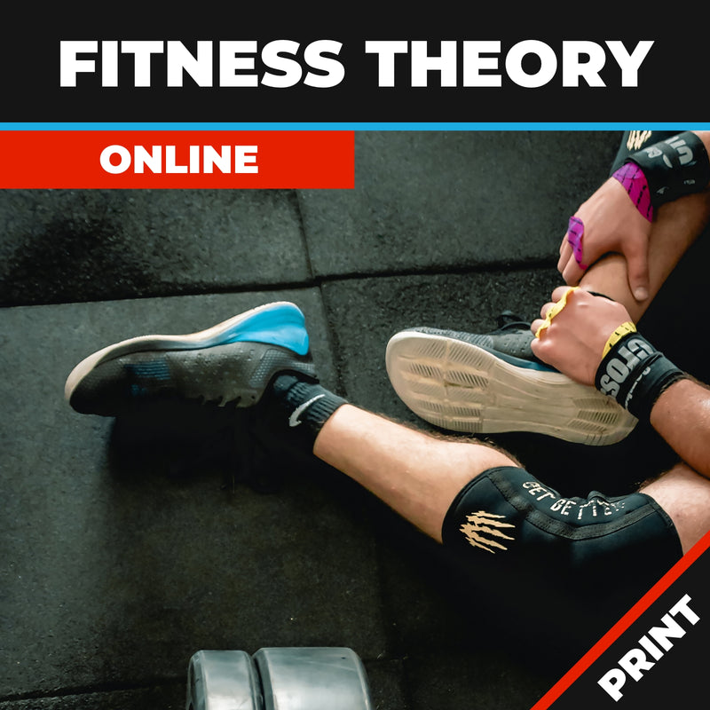Fitness Theory Online Course Print