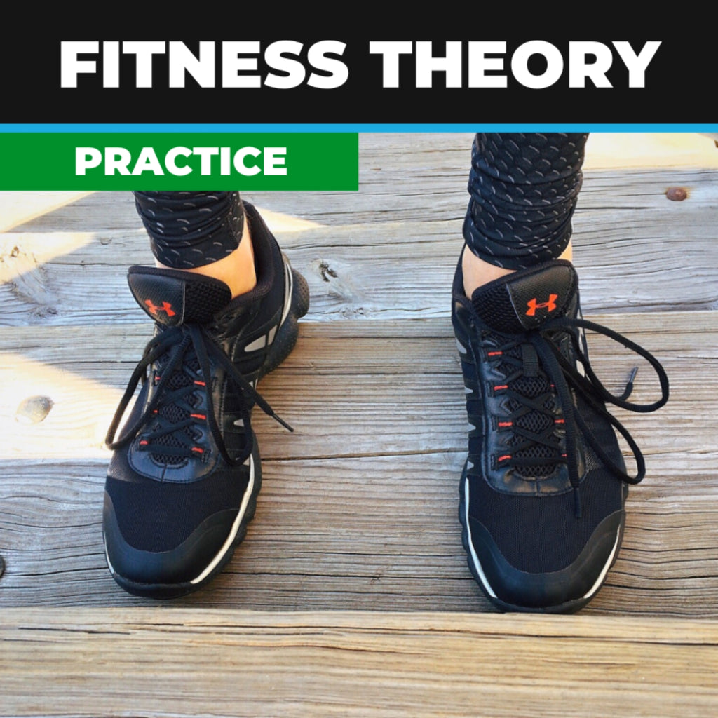 Fitness Theory Practice Exam