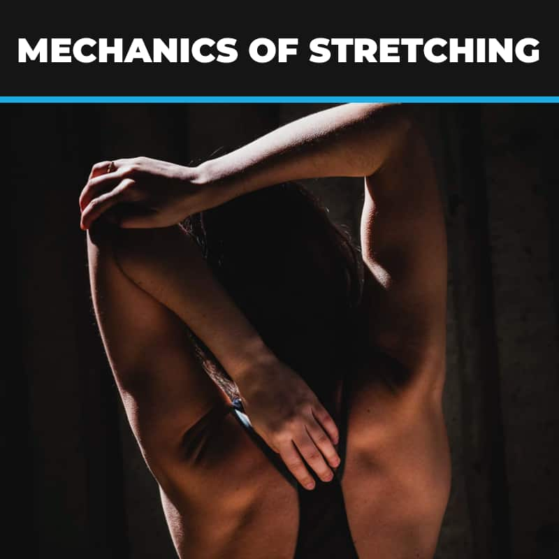 Mechanics of Stretching