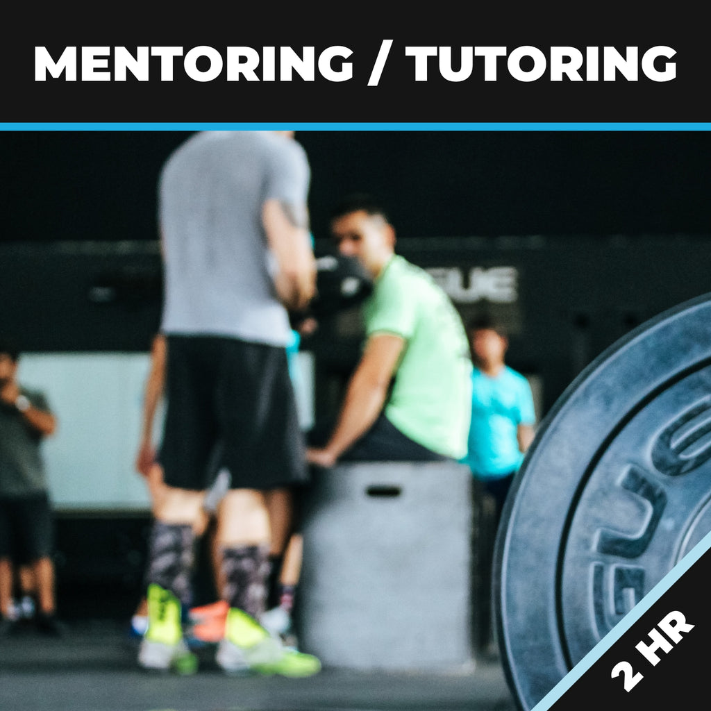 Mentoring/Tutoring 2HR