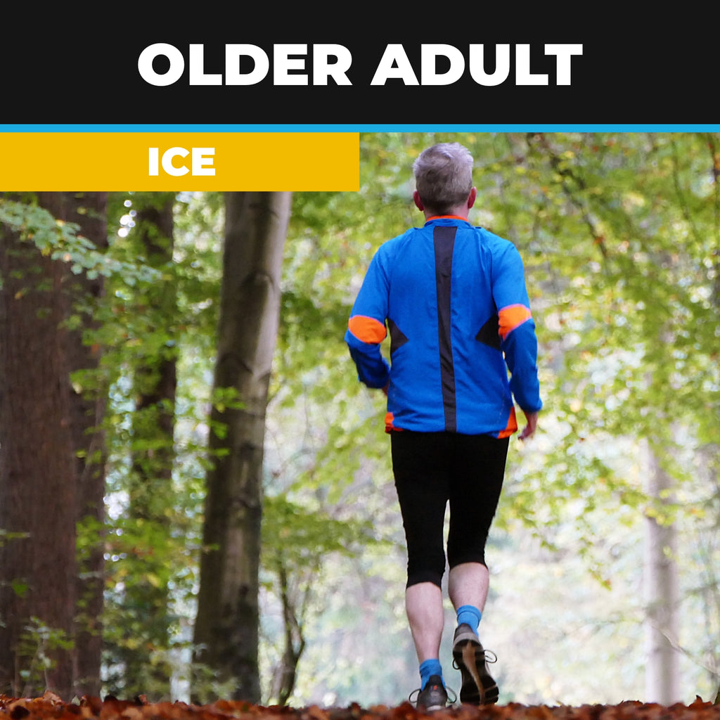 Older Adult ICE