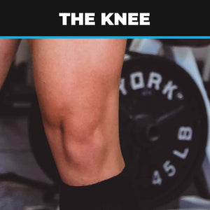 Knee Anatomy, Injuries, Ailments, Assessments & Exercises